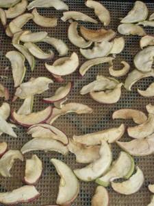 Dried Apples in Dehydrator
