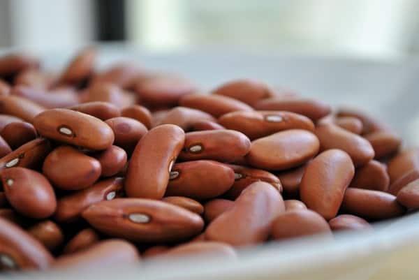 Degas Pinto Beans