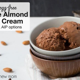 Chocolate Almond Chip Ice Cream - dairy-free, low-carb, AIP | Whole New Mom