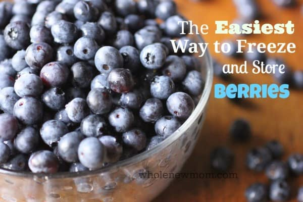 The Easiest Way to Freeze & Store Blueberries