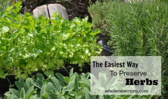The Easiest Way to Preserve Herbs. Really. Try this technique and you'll be enjoying herbs year round without a lot of fuss.