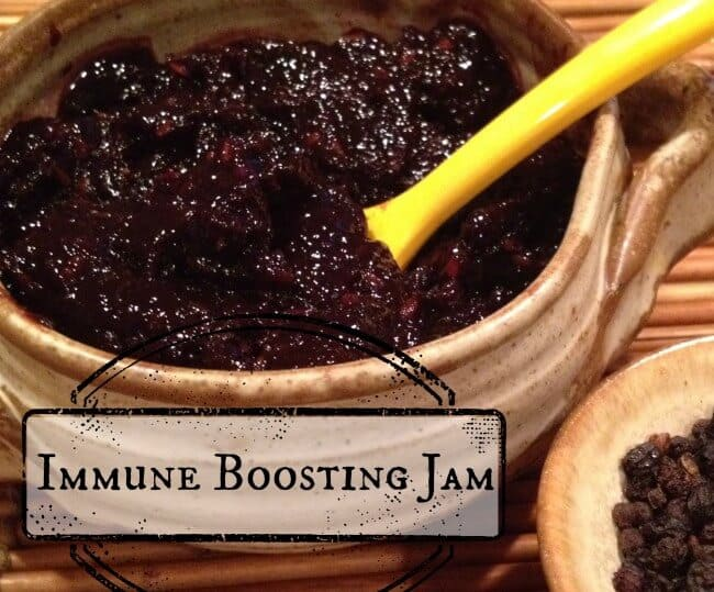 Ditch the Germs with this Immune Boosting Sugar-Free Elderberry Jam! http://wholenewmom.com/recipes/keep-germs-at-bay-with-delicious-immune-boosting-jam/