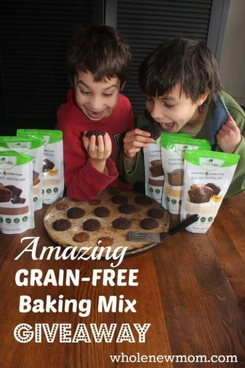 Grain Free Cookies, Muffins, and Quick Breads–Oh MY! –GIVEAWAY–2 Winners $95 Value