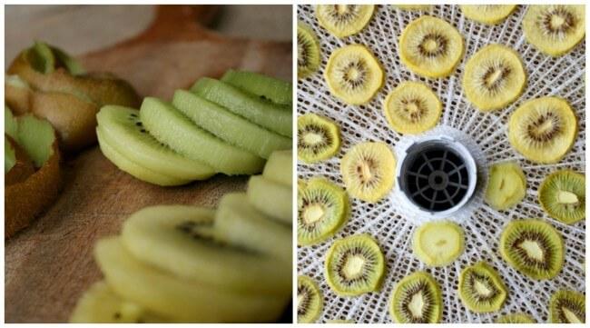 Kiwi for Coconut Fudge. Dehydrating Kiwi Fruit.