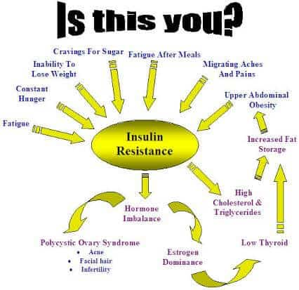 Insulin Resistance Information
