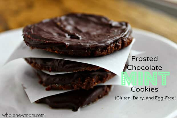 If you're a fan of Thin Mints, try these - Super Healthy Chocolate Mint Cookies! These vegan cookies are gluten-free, whole grain, and deeelish and made with teff flour which is very high in protein. We made 2 batches of these the day I got the recipe and they were gone in no time.