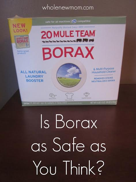 Borax. Is it as Safe as You Think?
