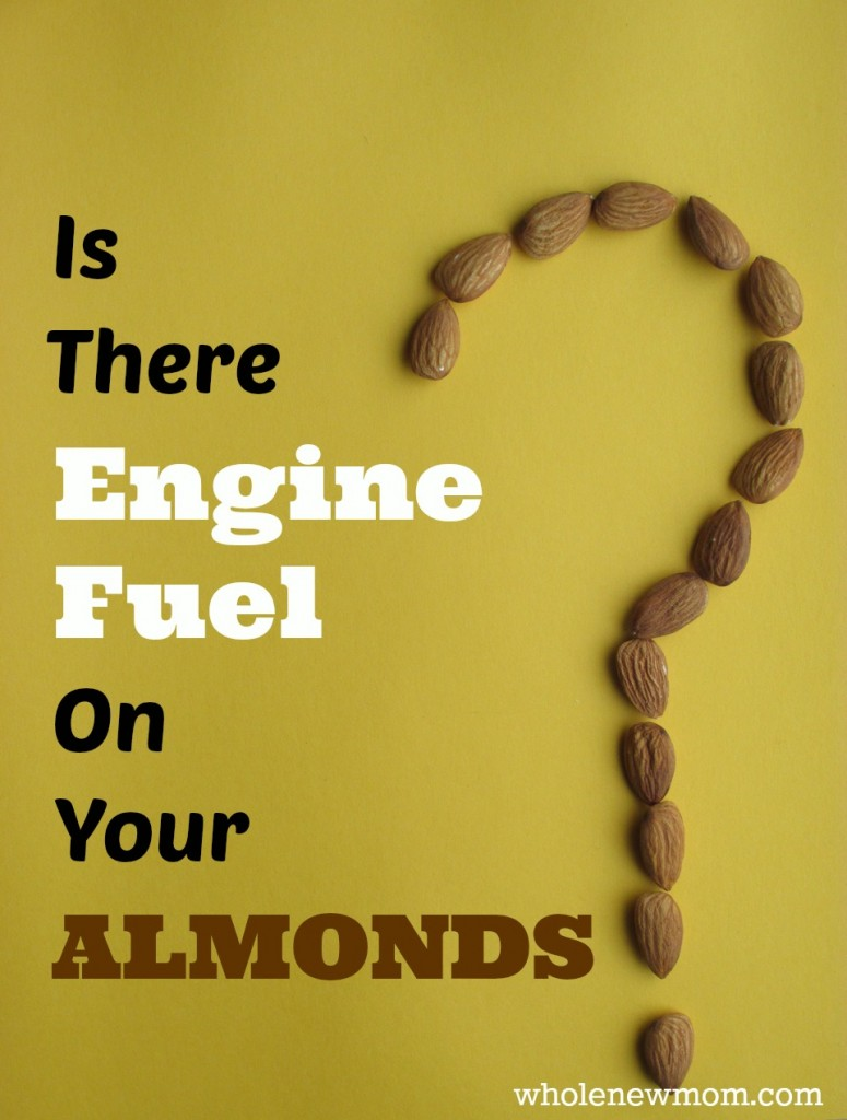 Gassed almonds? Did you know that engine fuel is on most almonds sold in the US? I heard that but didn't believe it at first. Then I did research and found out that it's true. Here's why there might be engine fuel on your almond and what you can do about it.