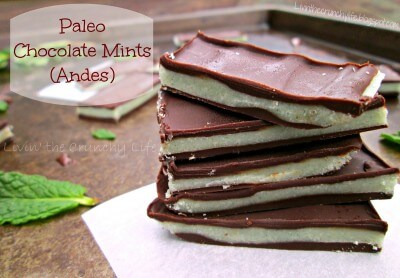 Paleo Andes Mints