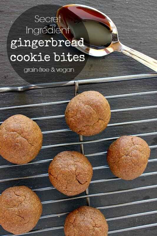 Secret Ingredients Gingerbread Cookies! Grain Free, Sugar Free, and Vegan!