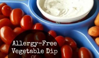 This Allergy-Free Homemade Mayonnaise Recipe is also a great Homemade Vegetable Dip. Vegan, soy, and nut-free!