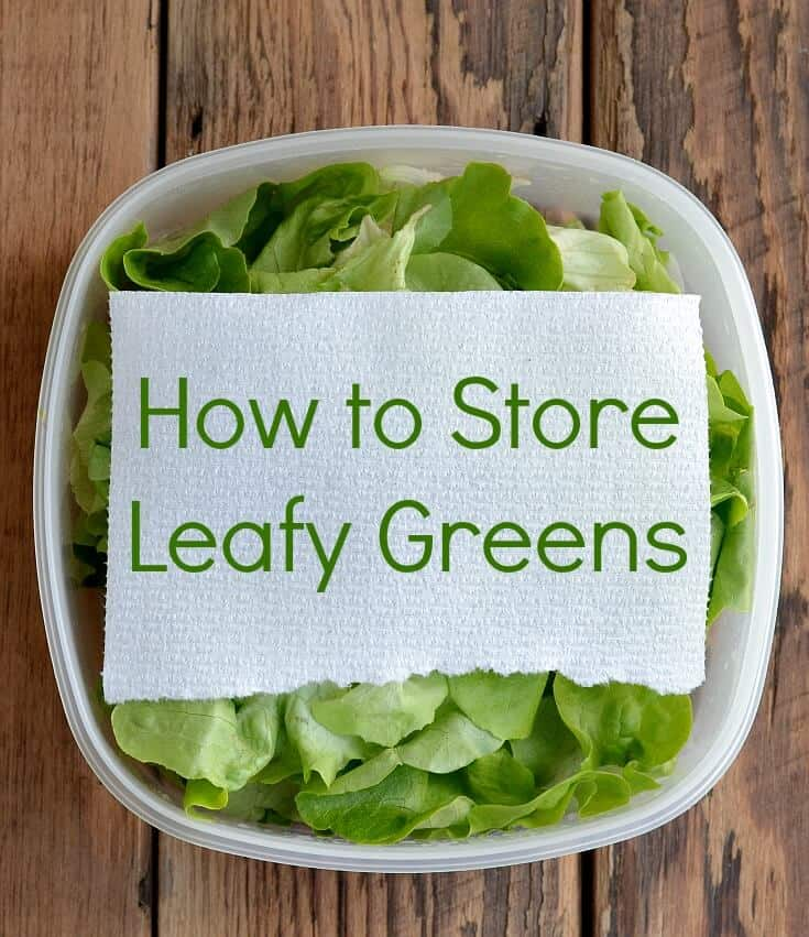Tired of having your produce spoil and wasting food and money? Here's how to Store Leafy Greens. Stop throwing away spoiled food and have a healthier diet and a healthier wallet too.