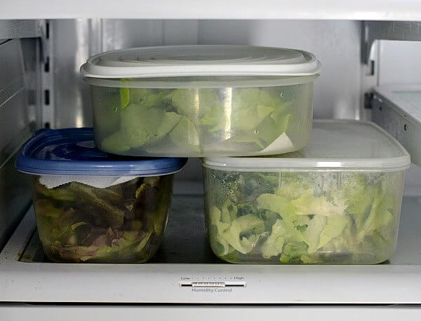 How to Store Leafy Greens! Stop throwing away spoiled food and have a healthier diet and a healthier wallet too!