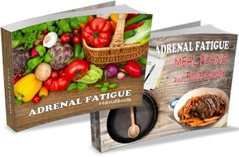 Adrenal Fatigue Handbook & Meal Plans Guide