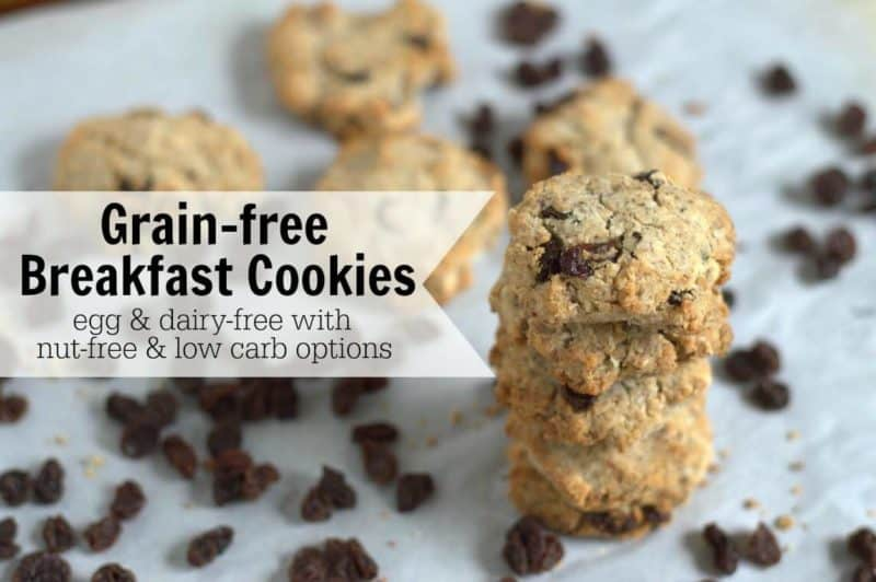 These Grain-Free Paleo Breakfast Cookies are egg free with low-carb and nut-free options. You can have these Grain-Free Breakfast Cookies any time of the day. They're super filling too!