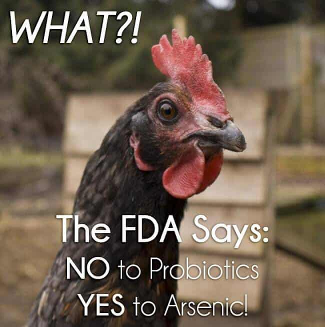 Can you believe this? The FDA says NO to Probiotics, but YES to arsenic? This kind of thing makes me really MAD!!!