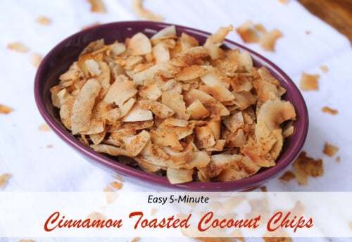 Cinnamon Toasted Coconut Chips