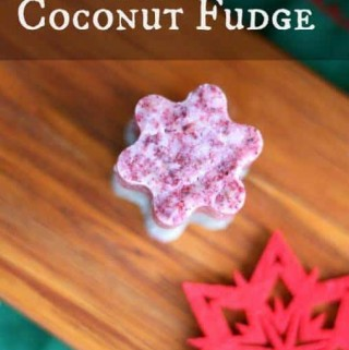 Looking for an easy healthy dessert? This paleo fudge is loaded with healthy ingredients and comes together super fast and has a low carb option. It's autoimmune paleo (aip) friendly too.