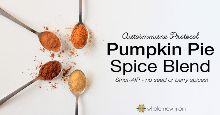 AIP Pumpkin Pie Spice Ingredients on spoons