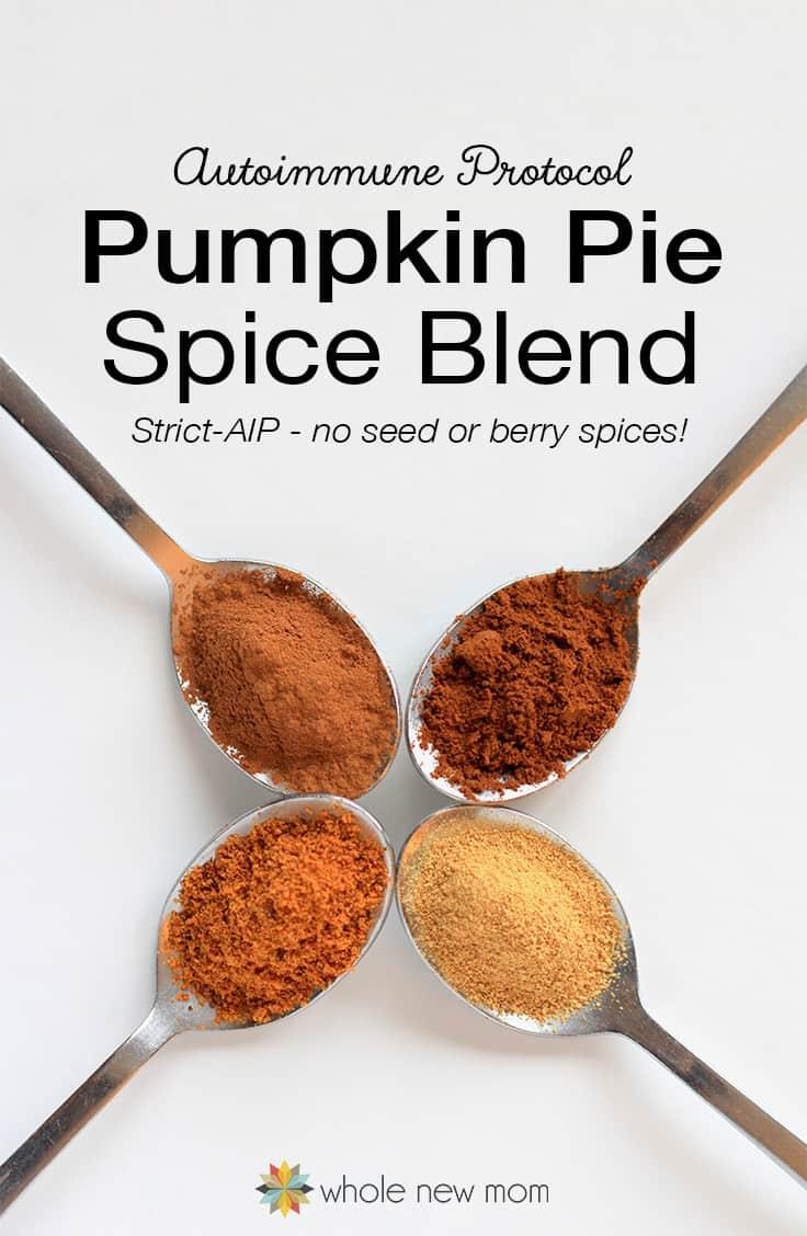 AIP Pumpkin Pie Spice Ingredients on spoons