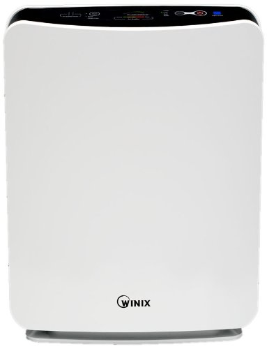 Natural Allergy Remedies - Winix Air Filter