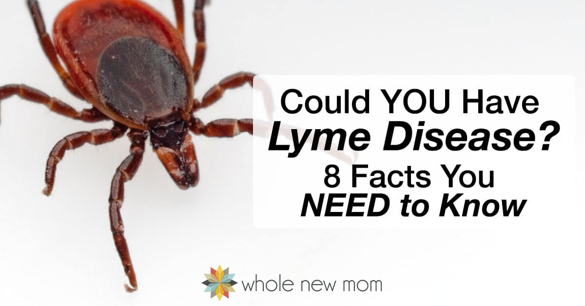 Could YOU Have Lyme Disease?  8 Facts You NEED to Know
