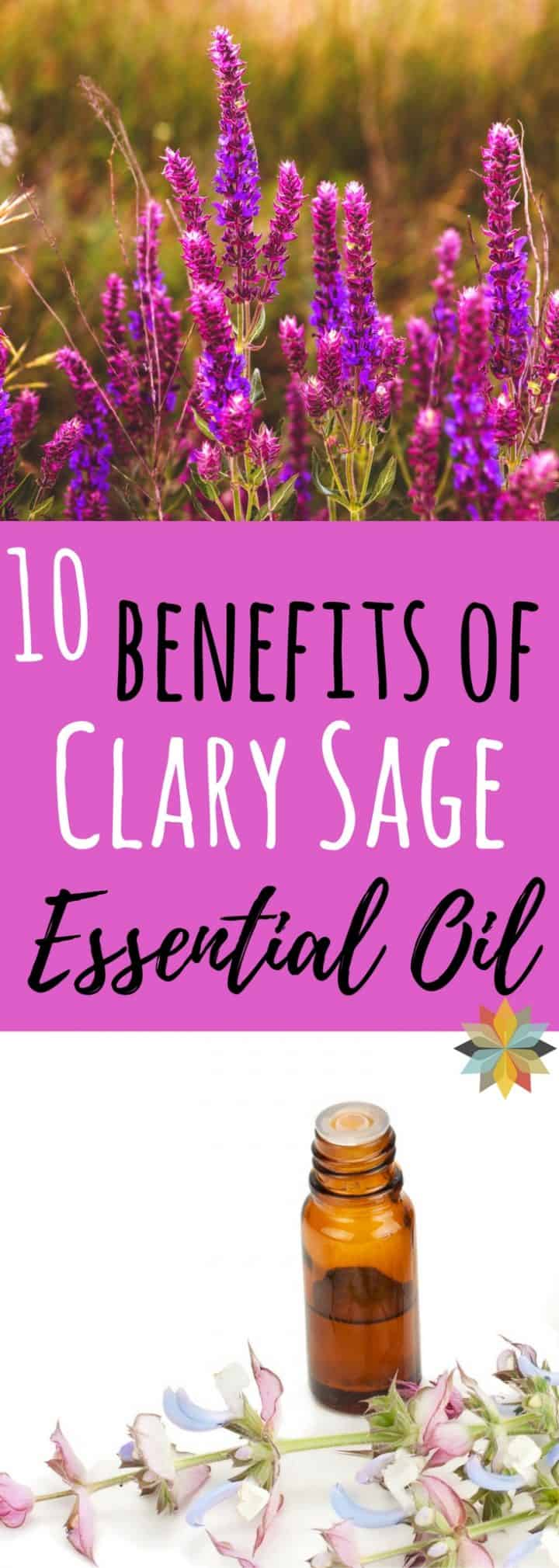 10 Clary Sage Benefits Hormones Insomnia More Whole New Mom