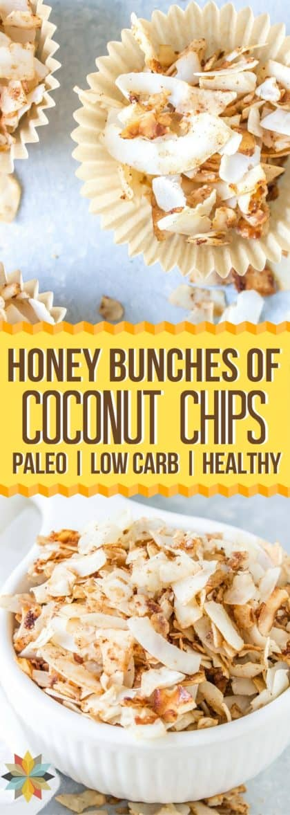 Honey Bunches of Oats® Coconut Chips -- sugar free, low carb, keto, vegan, gluten free, THM, AIP