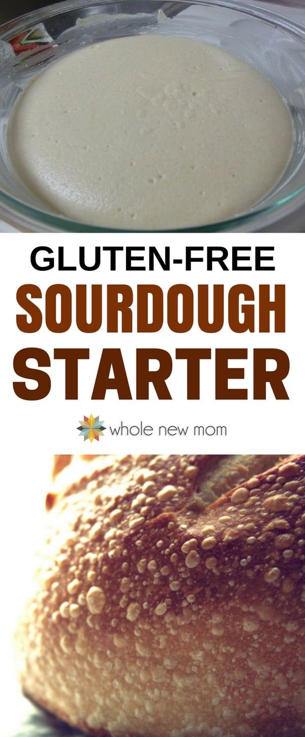 Love sourdough but you're gluten free? This Gluten-Free Sourdough Starter is so easy- you can have tasty sourdough bread ready right away. With this Gluten-Free Sourdough Starter it's super simple so you can get started right away without any special ingredients, and you can use a whole variety of gluten-free flours. #glutenfree #wholenewmom