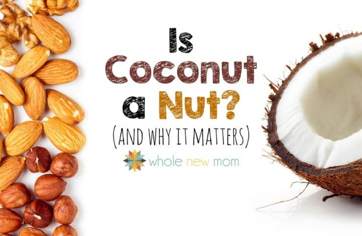 Is Coconut a Nut?
