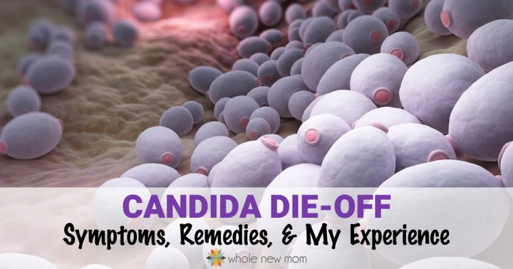 Candida Die-Off: How to Avoid & Manage It & My Story | Whole New Mom