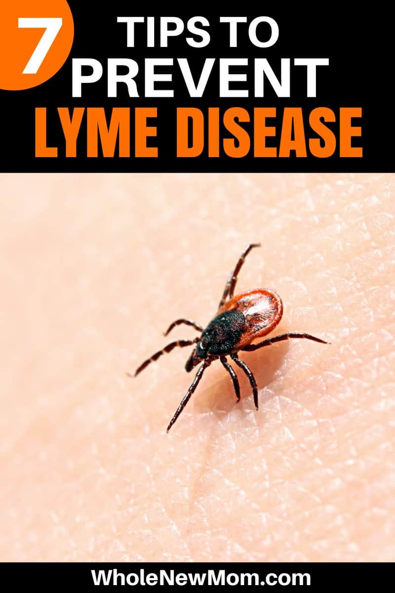 Lyme Disease Prevention Tips - Tick Bite