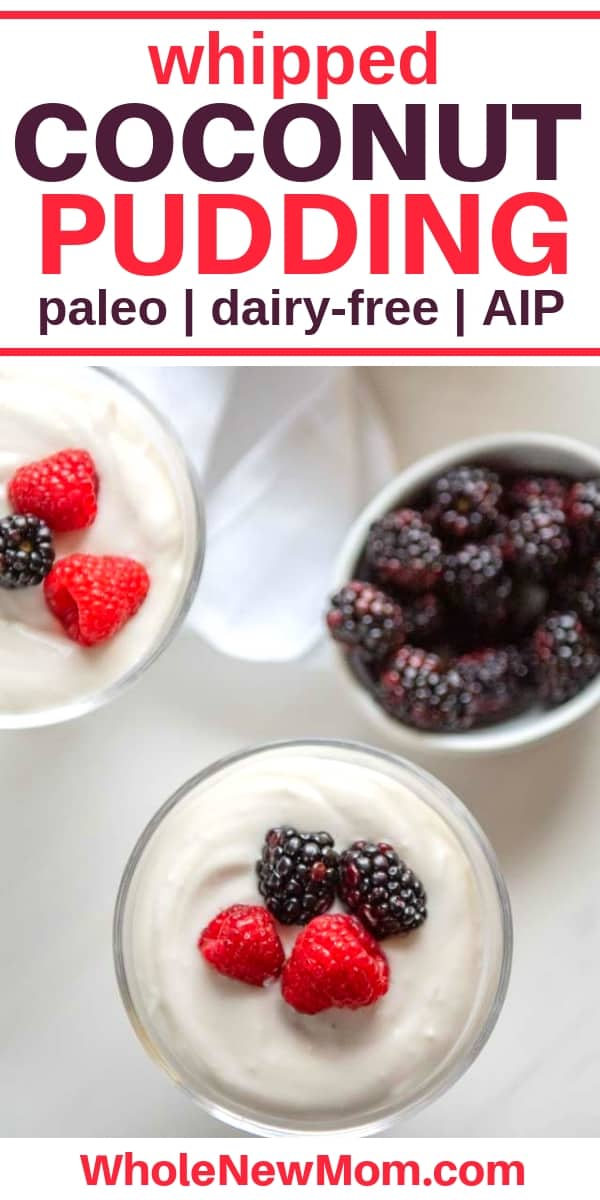 paleo coconut pudding with berries on top in glass dessert dishes