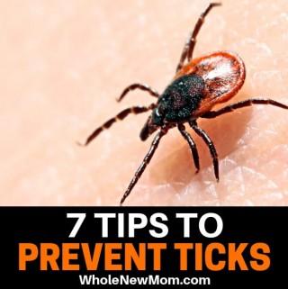 tick on skin for tick prevention