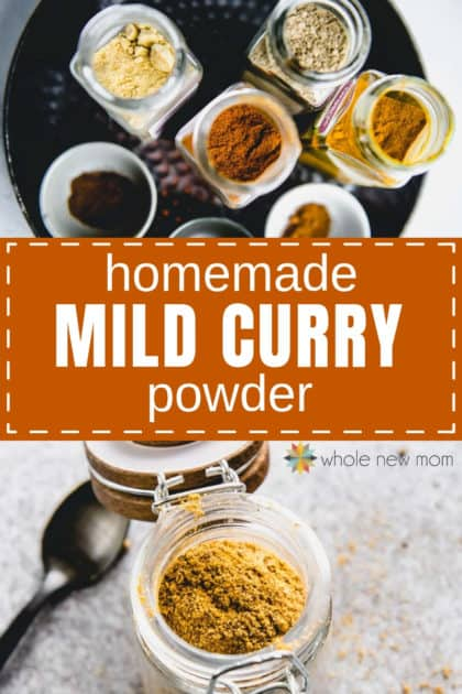 homemade curry powder and ingredients