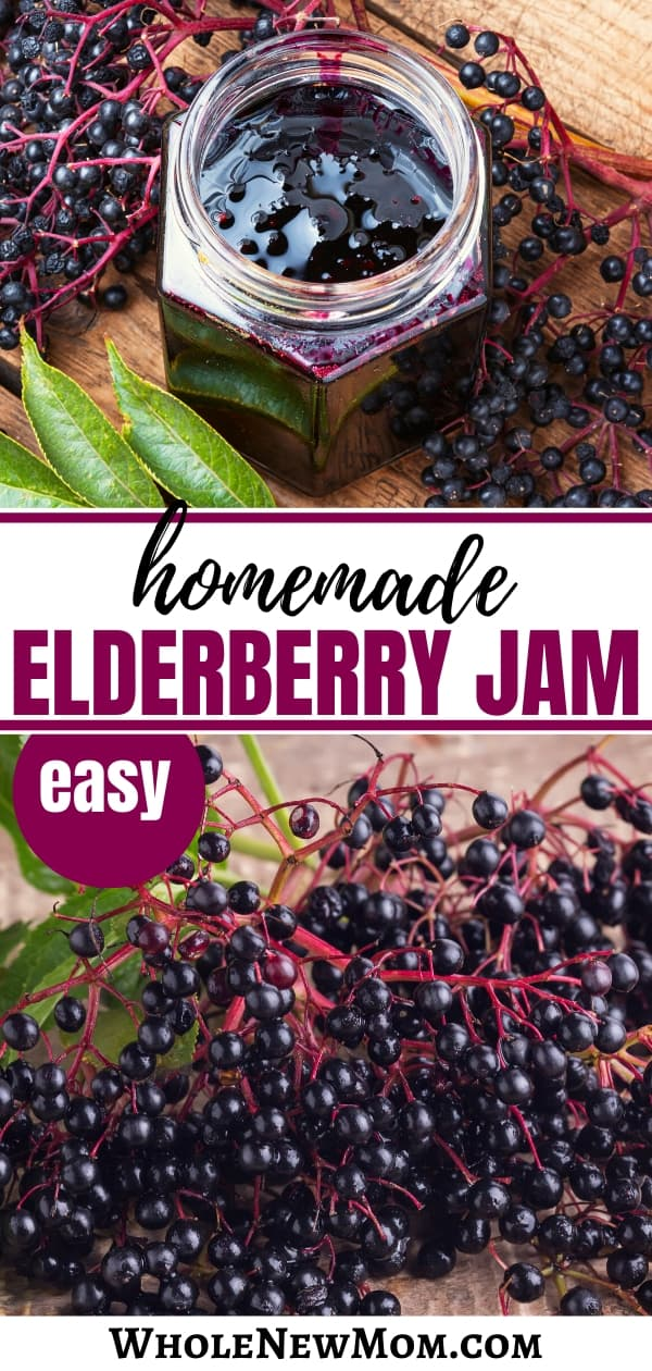 homemade elderberry jam with elderberries in a collage