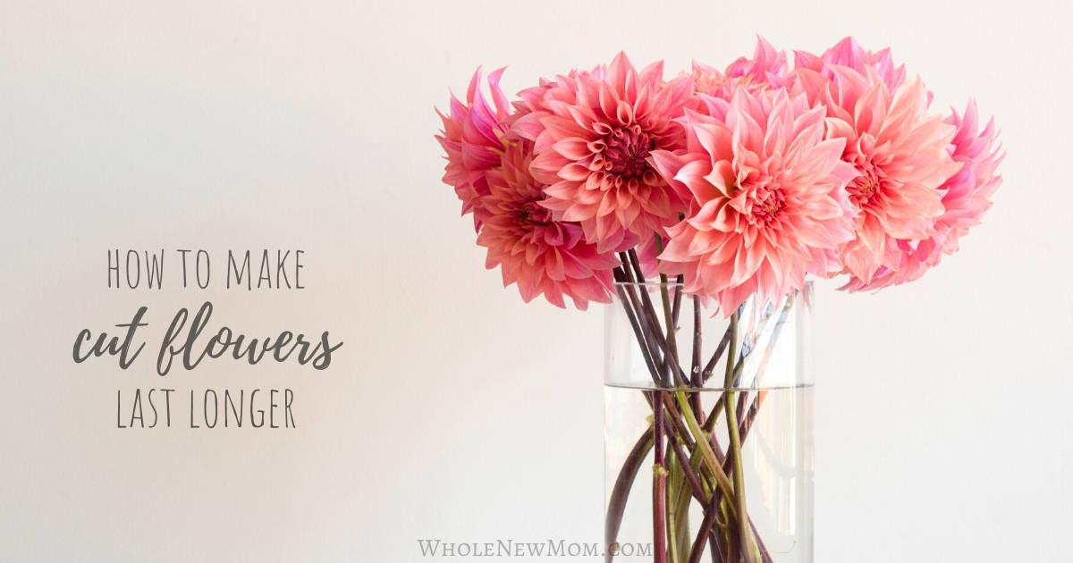 How To Make Flowers Last Longer Plus The Best Method Of All