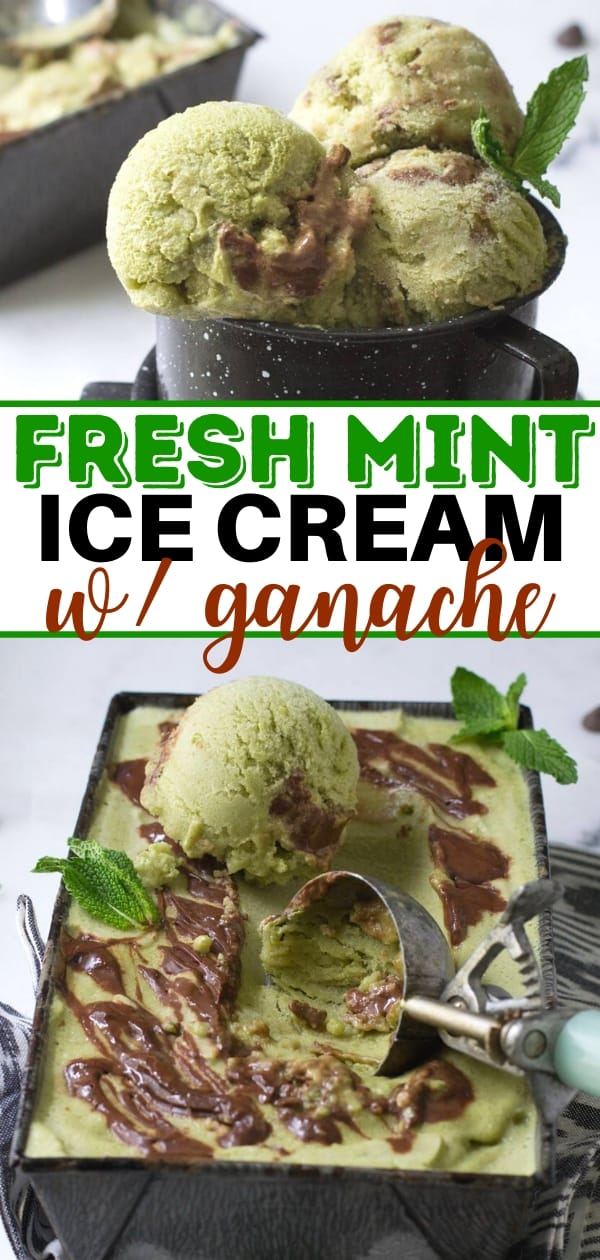 collage of fresh mint ice cream with chocolate ganache in a metal cup and pan with ice cream scoop
