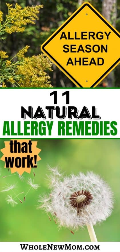 collage of Allergy Season sign and dandelion for natural allergy remedies post