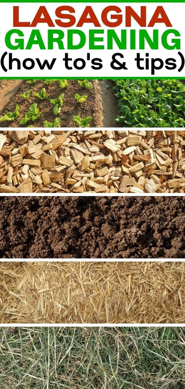 pinterest image for lasagna gardening post with grass, compost, manure, straw and wood chips