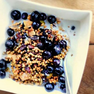 buckwheat granola topped with dried cranberries