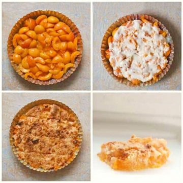 collage of different apricot crisps